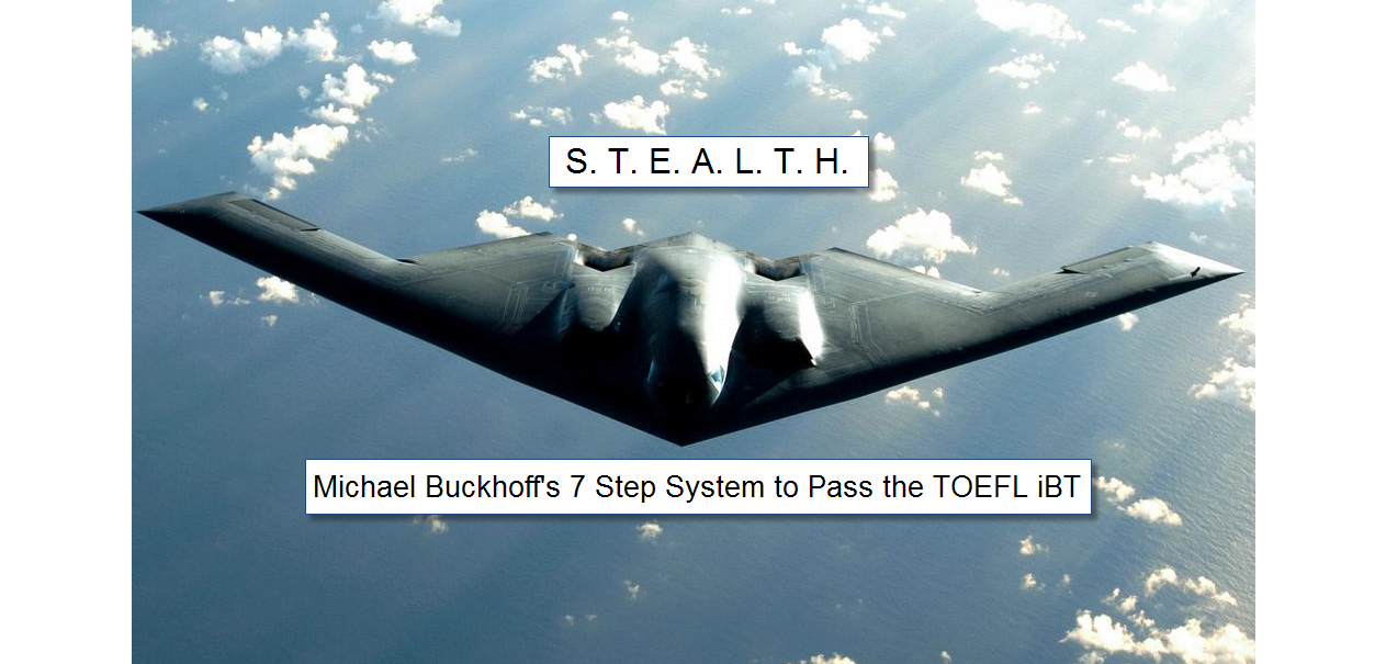 Picture of Stealth Fighter Jet